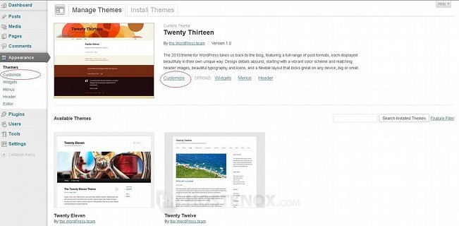 Accessing the Theme Customize Section